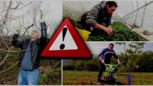 Nevşehir İl Tarım Girişimci Genç Çiftçi Adaylarına  Uyarıyor