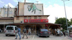 Avanos Belediyesi Nesli Tükenen Hayvanları  Resimleriyle Yaşatıyor